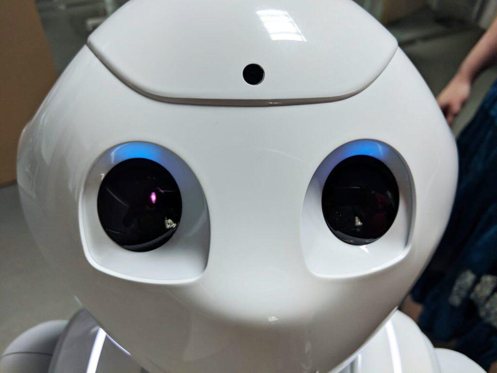 Diario Dia4ra reconocimiento facial con los sensores del robot (cámara)