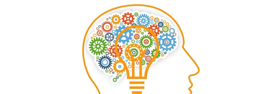 Introducción a neurociencia - primer paso para desarrollar Neural Networks